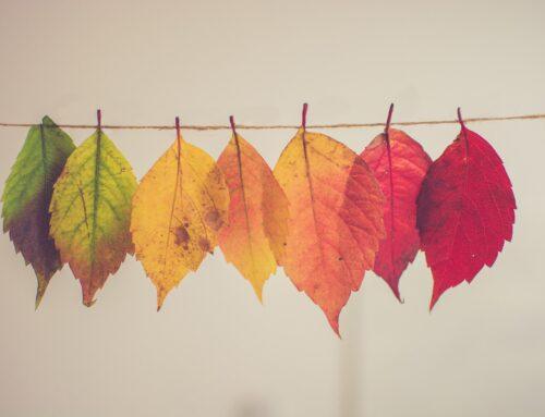 De la negación a la transformación: las 6 fases del cambio