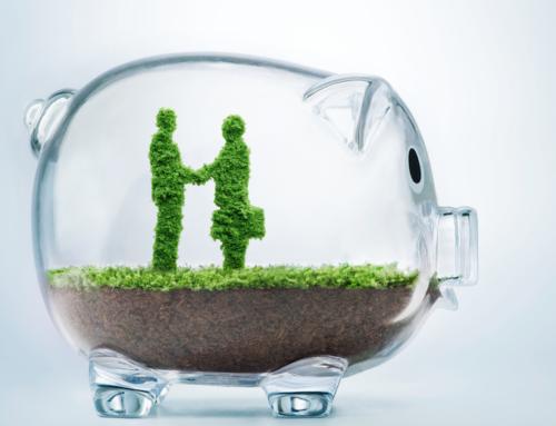Por qué es importante la transparencia en las organizaciones